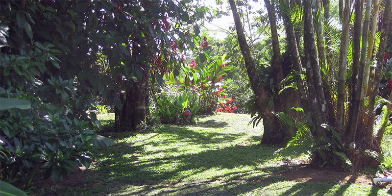 Arenal Vacation Rental Gardens